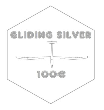 SILVER : Pack 'GLIDING BRONZE' + an A350 XWB model (scale 1:400)