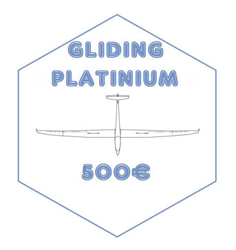 PLATINIUM : Fly in the Alps !! Discover gliding in mountaineous areas ! You will fly with me for at least two hours ! You will be filmed with a GoPro to share your memories from this unforgettable flight + autographed photo + A350 XWB model (scale 1:400)