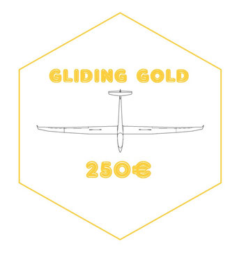 GOLD : Discover gliding in my club near Paris (Pont sur Yonne) ! You will fly with me for at least one hour ! You will be filmed with a GoPro to share your memories from this amazing flight + autographed photo