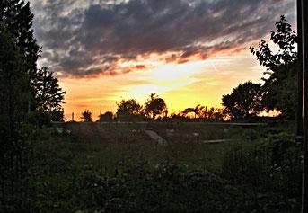 Sonnenuntergang, Garten, Natur