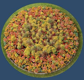 Blumenrabatten auf der Buga in Rathenow