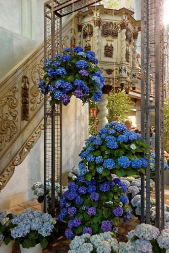 Eine Blumenschau in der Kirche in Havelberg