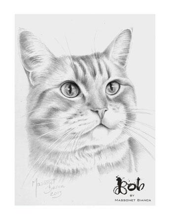 Streetcat Bob - pawtrait by Bianca Massonet