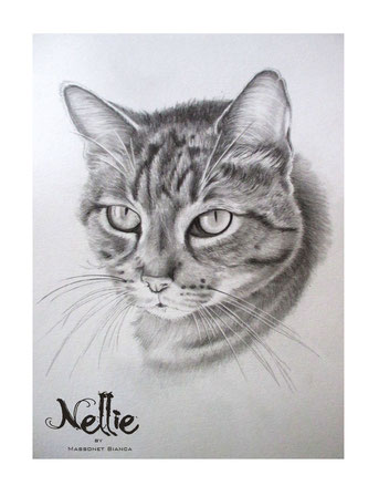 Nellie - pawtrait by Bianca Massonet