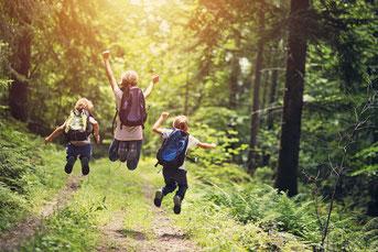 Geburtstag feieren im Wald. Einen Tag Natur erleben pur!