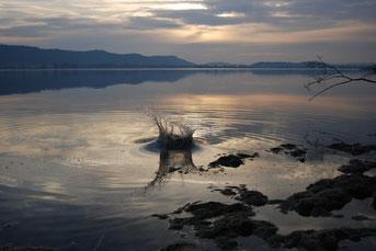 Ein Stein fällt ins Wasser und schlägt bewegende Impulse bis ans weit entfernde Ufer. / Fotografie von Kayl Naris