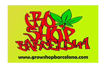 grow shop Barcelona comprar semillas marihuana BIG seeds