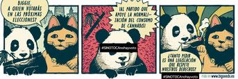 si no toca no hay voto biggie panda cannabis