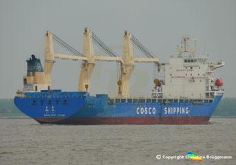 Heavy Lift vessel DA JI