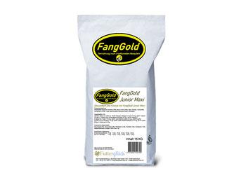 FangGold Junior Maxi