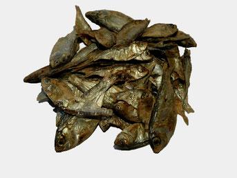 Trocknfisch