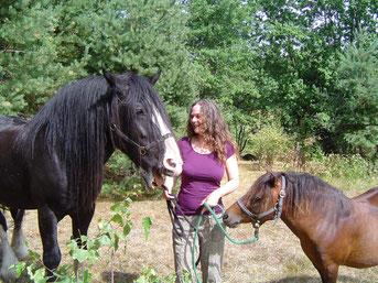 Meine Pferde Lucky und Krümel