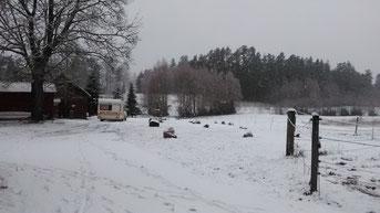 Unsere Wohnmobilstellplätze: Camper gibt es auch im Winter :)