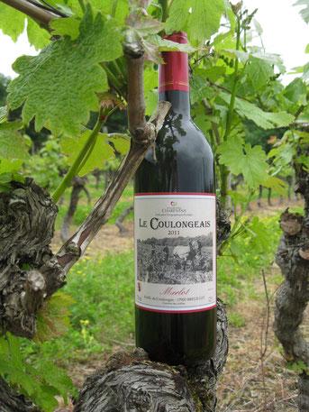 Merlot Tradition Vin de Pays Charentais