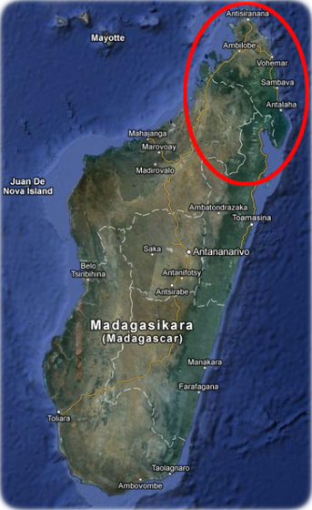 Verbreitung des grossen Madagaskar Taggeckos (Phelsuma grandis) Karte