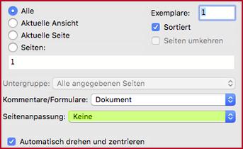 Ansicht Adobe Acrobat Reader «Seitenanpassung: keine»
