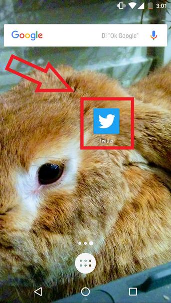Cambiar Contraseña De Twitter