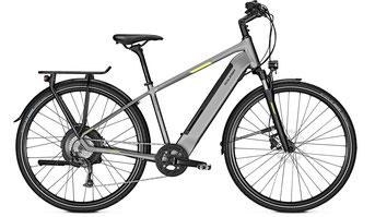 Raleigh Stanton City/Trekking e-Bike 2019