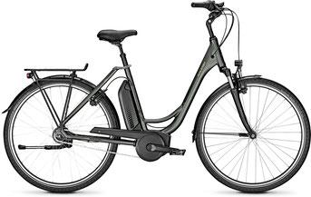Raleigh Jersey City e-Bike 2019