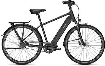 Raleigh Sheffield City/Trekking e-Bike 2019