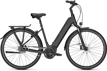 Raleigh Austin Lasten e-Bike 2018