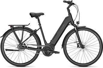 Raleigh Bristol Komfort e-Bike 2019