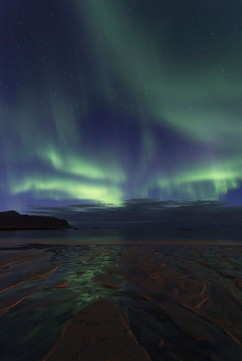 Aurora Borealis reflecting in the sand of Ramberg beach, Lofoten Islands, Norway, Scandinavia, Europe
