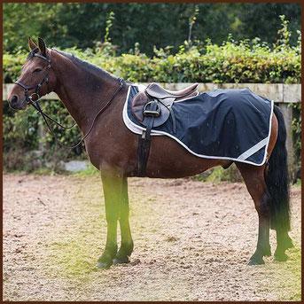 Reitsport Heiniger, Schönbühl - Blogartikel Ausreitdecke HORSEWARE Amigo Competition Sheet