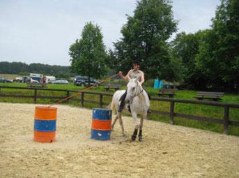 Auch meine erste Reiterrallye bestritt ich mit Antaris und wir lagen im vorderen Mittelfeld!