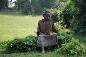 Shimbwe Wiesen