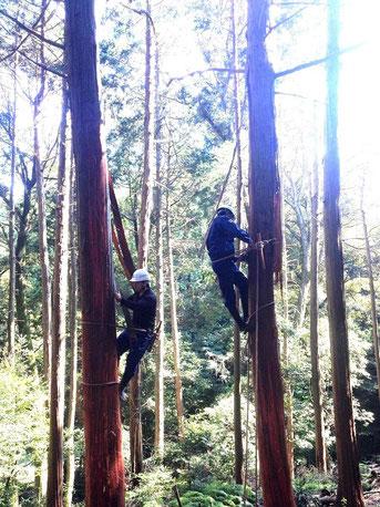 京都森林インストラクター会活動写真
