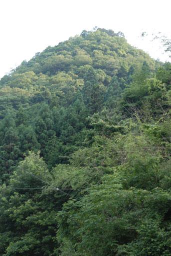 流祖久盛が一ノ瀬城を築いた一ノ瀬山 北側からの遠望