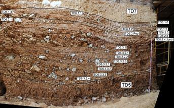 Nivel TD6 del yacimiento de Gran Dolina en Atapuerca / CENIEH