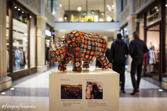 Foto von der Ausstellung, von Norman Staron