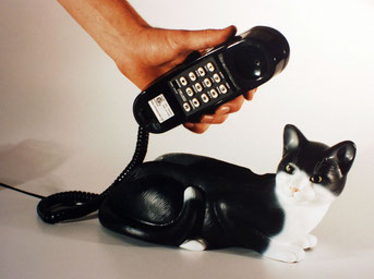 Telephonica: Buesitelefon