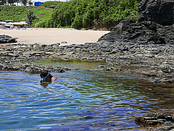 Noronha - Pools bei Ebbe