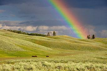 Arc en ciel, couleurs naturelles, rouge, jaune, vert, bleu, orange, violet
