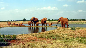 Tsavo Est National Park