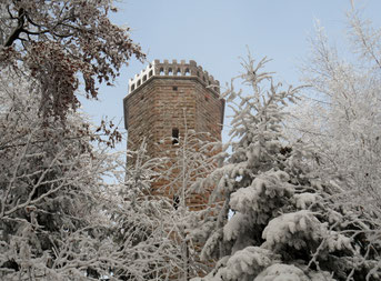 Friedvolle Winterruhe in Wald und Wingert