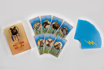 Ich arbeite mit den Karten der Kraft von Jamie Sams und David Carson.