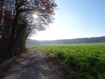 Waldspielgruppe Waldhäsli Oberhasli Rümlang Dielsdorf