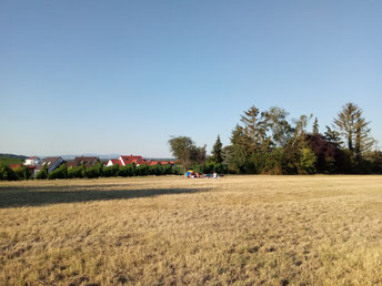 Summerspecial 2020 Yoga am Weinberg in Bodenheim