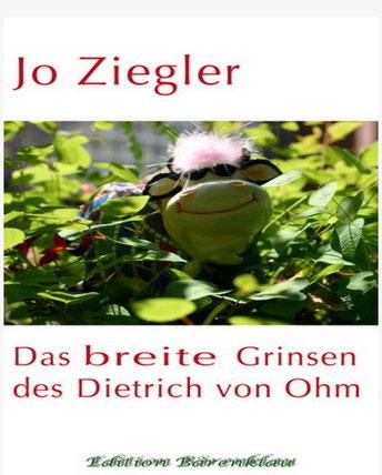 Jo Zieglers neue Novelle - ISBN: 978-3-7309-7626-5