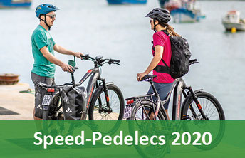 S-Pedelecs 2020