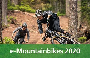 e-Mountainbikes - 2020