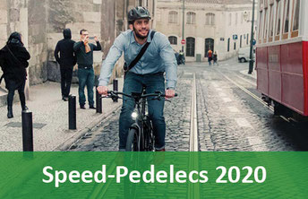 Speed Pedelecs - 2019