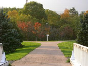 公園内の橋から