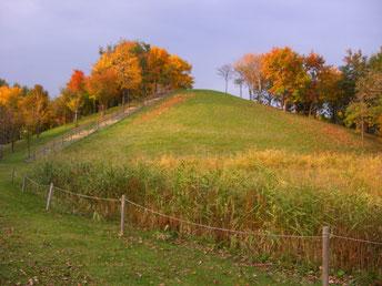 公園入口の丘