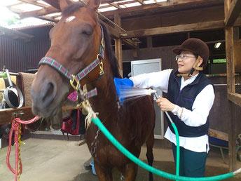 山藤万里子さんが馬に乗る理由
