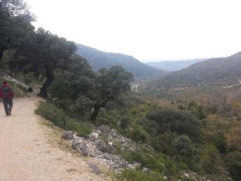Immer wieder kommt hinter einer Kurve das Dorf Benamahoma in Sicht.